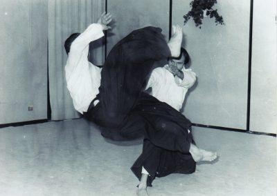 locandina Aikido